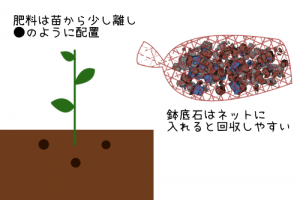 肥料の配置